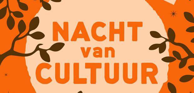 Nacht Van Cultuur - Cultuurfestival Vanuit Museum Helmond